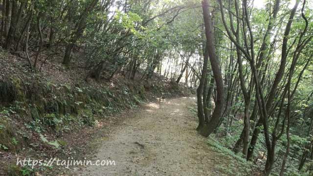 高根山の小鳥の森