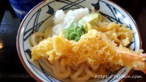 丸亀製麺のおろし醤油うどん