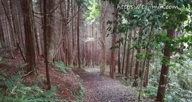 潮見の森散策