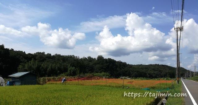 多治見の田園風景