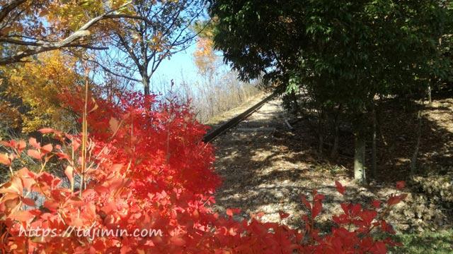 セラミックパークMINOの紅葉