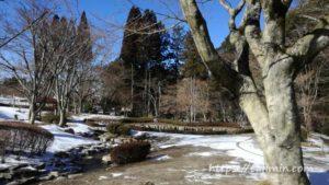 冬の曽木公園