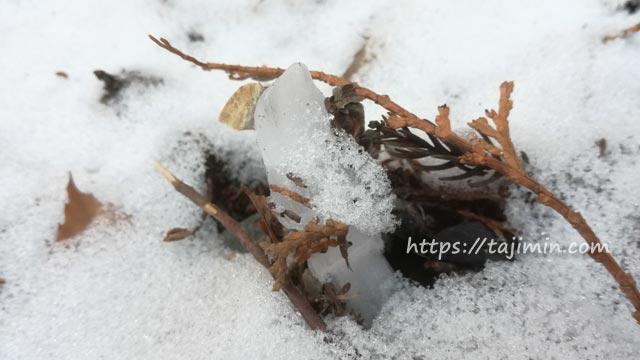 冬の曽木公園周辺