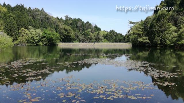 潮見の森 大洞溜池