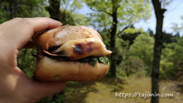 潮見の森でピクニック