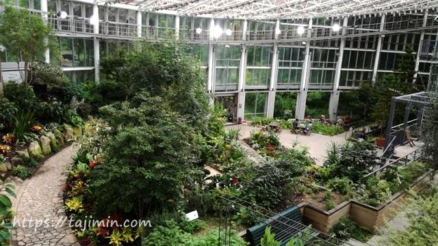 花フェスタ記念公園の花の地球館(大温室)