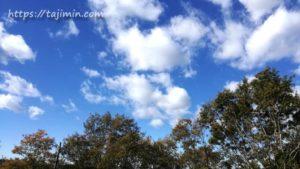 11月の空