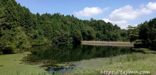 潮見の森大洞池