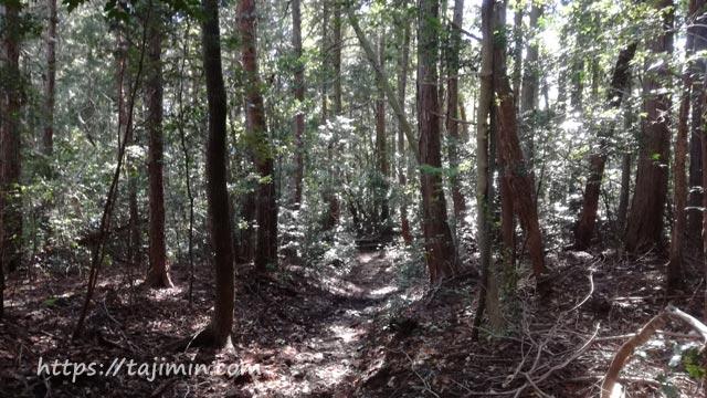 高社山への道
