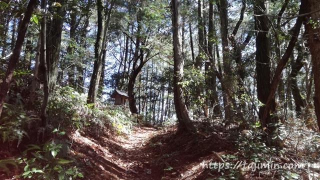 春の高社山登山