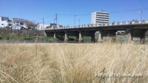 土岐川河川敷